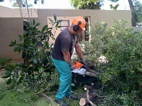 Chainsaws and helmets are part of a Roodepoort Tree Fellers gear when trimming and cutting trees